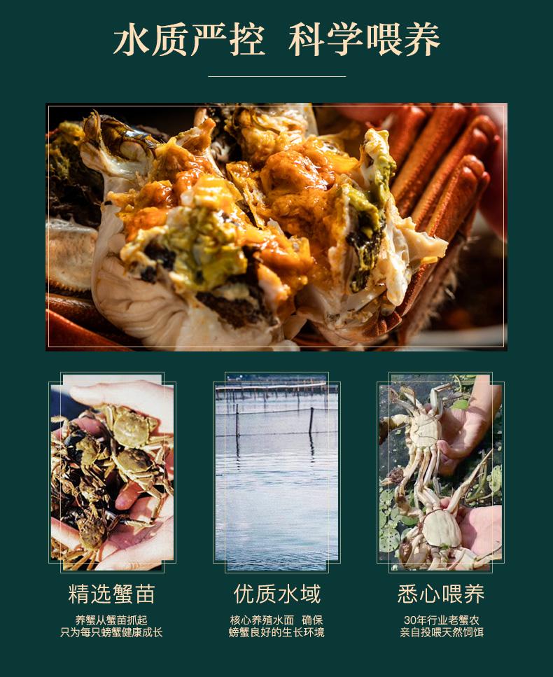 【活蟹礼盒】阳澄湖大闸蟹鲜活现货礼盒 公3.8两 母2.5两 4对8只装