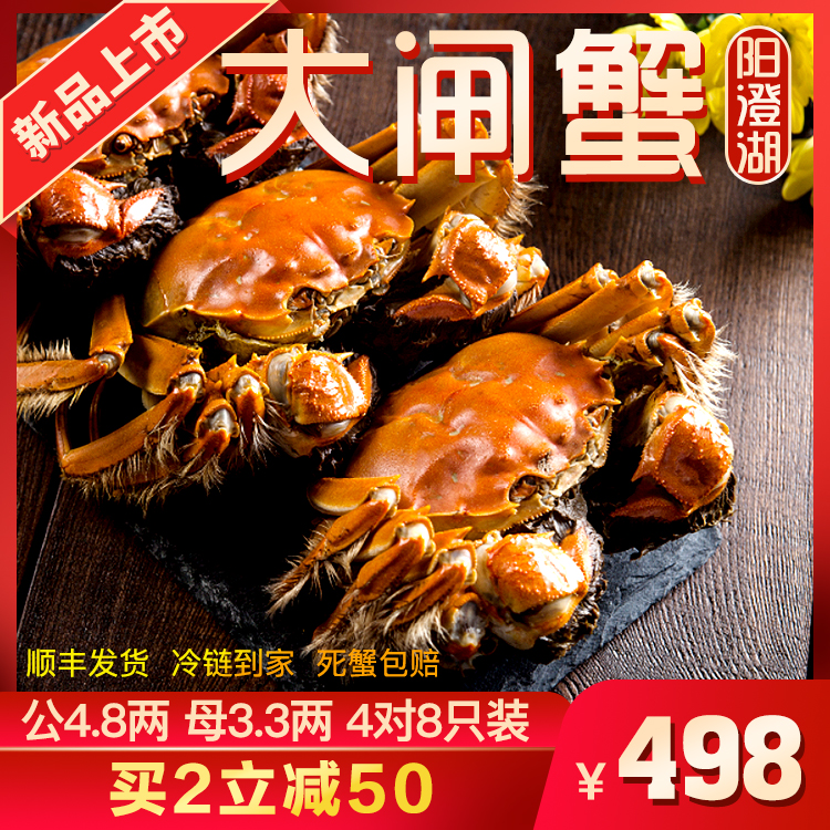 【活蟹礼盒】阳澄湖大闸蟹鲜活现货礼盒 公4.8两 母3.3两 4对8只装
