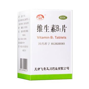 亚宝药业维生素B2片5mg*100片